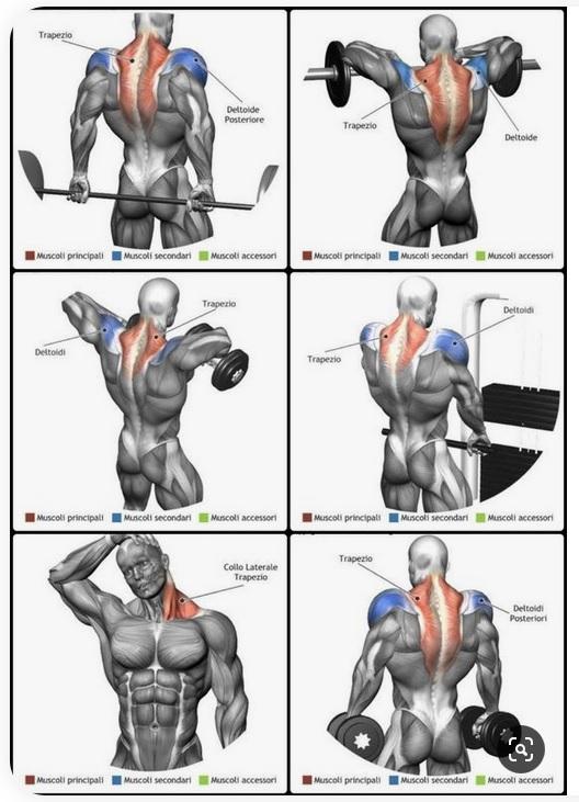 Einige wirksame Nacken-Schulter-Übungen