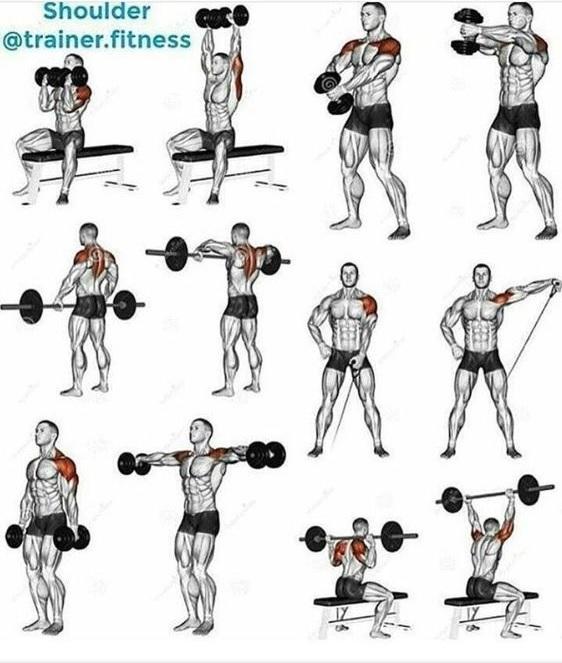 Übungen mit Hanteln für starke Schultern